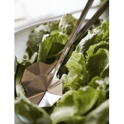 Łyżki do sałaty, Leaf, kolor mosiądz