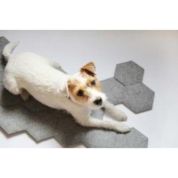 Legowisko dla psa w kształcie kości