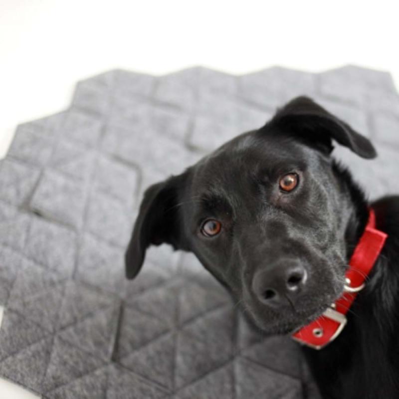 Dywan dla psa z serii Kukka
